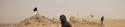 Dans le désert en libye la guerre civile