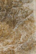 Dessin de Léonard de Vinci