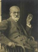 Éphémère destinée Sigmund Freud Élisabeth Roudinesco philosophie psychanalyse réflexion doctrines traduction Gallimard