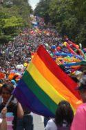 Image de manifestants pro mariage gay Herman Duarte genre Amérique latine mariage homosexuel condition LGBT progrès droits humains droits individuels international